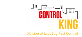 Pest Control Boston King